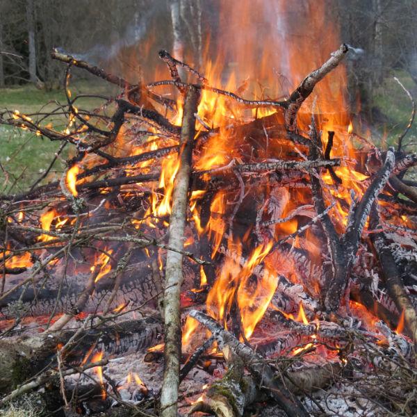 Eld vid fagning 2015